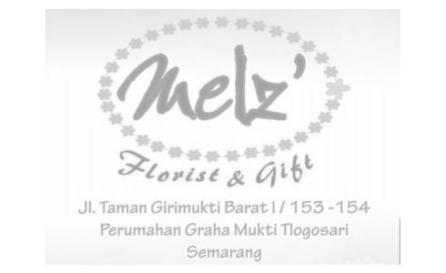 Carousel 14 – Melz Flower